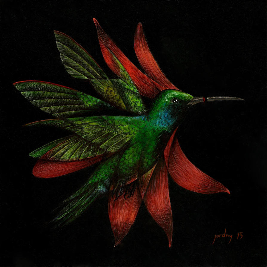 unnamed - humming bird by Arcanvm