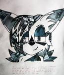 Collage work Nicole the lynx