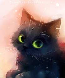 oldfatcat