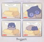 boggart - 14