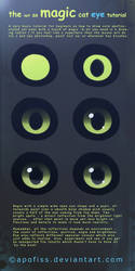 cat eye tutorial by Apofiss