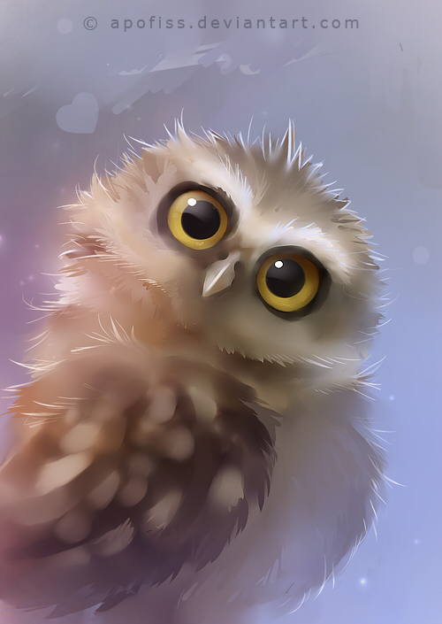 burrowing owl by Apofiss