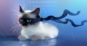 fancy ninja cat by Apofiss