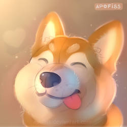 okay doge by Apofiss