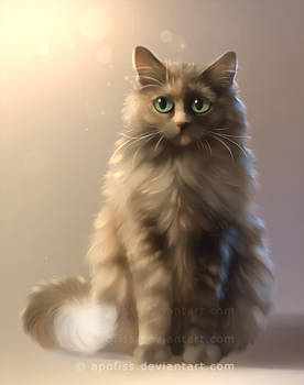 puff is fluffy
