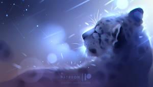 winter Orion
