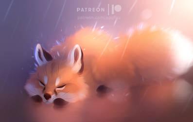 foxy fuzz