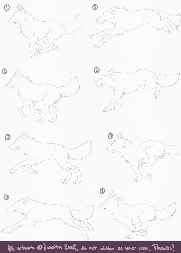 how I animated running wolf by Janaita on DeviantArt