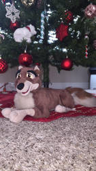 Laying Balto plush by Oklahoma-Lioness
