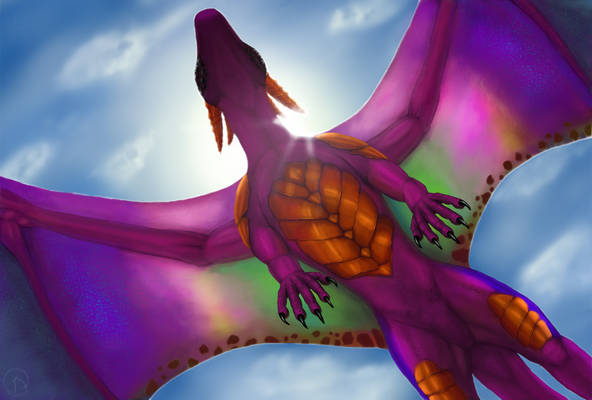 Dragon On The Sky