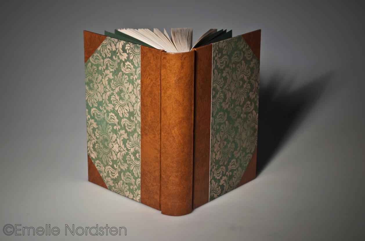 My 2011 Diary by Folksaga