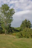 Parc du Grand Blottereau 18 by Jules171