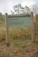 Ile Ripoche01 by Jules171