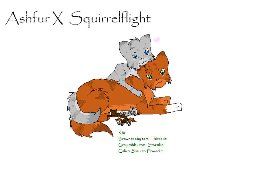 Warrior Cats Squirrelflight Kits Fanfiction
