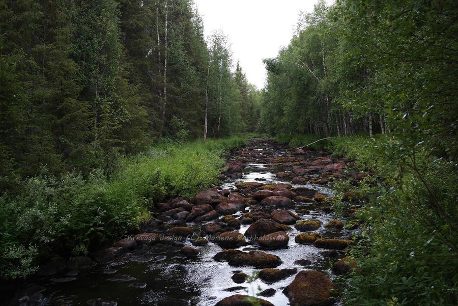 silent stream by superxtoon