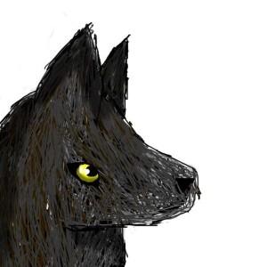 starlitewolf's Profile Picture