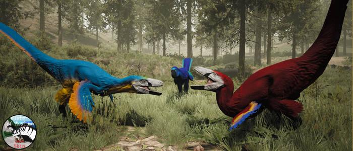 Macaw Laten