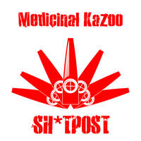 Album Art Concept (Sh*tpost by Medicinal Kazoo) by AniMerrill
