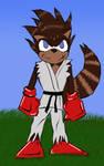 Ryu-Racoon