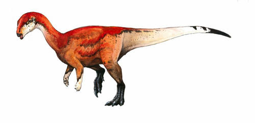 Antarctic Iguanodontian