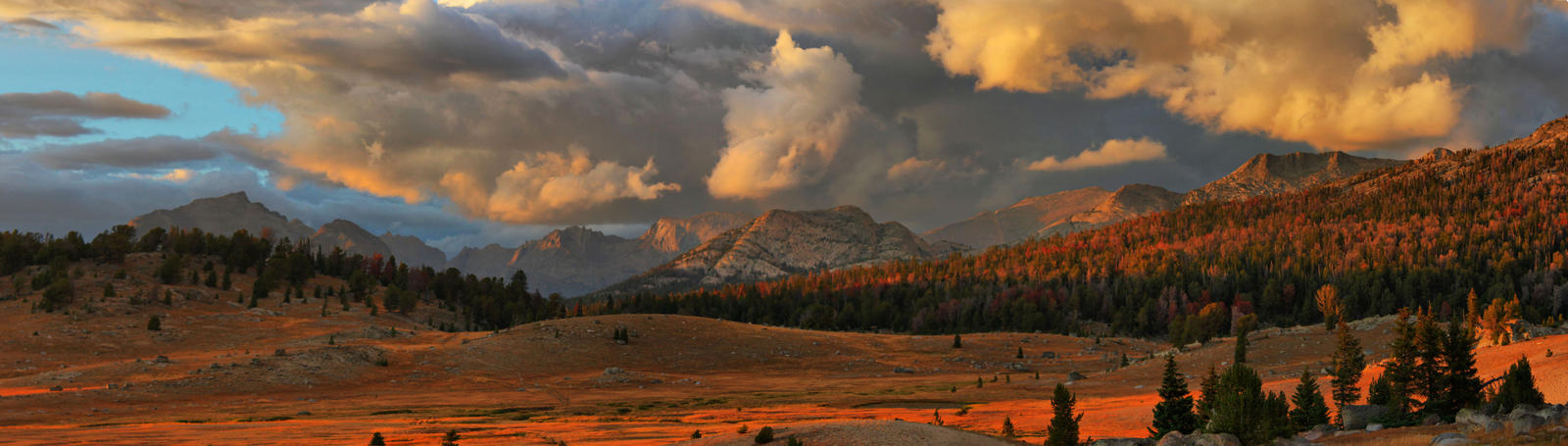 The Oregon Trail by Halcyon1990