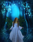 -Fairy Forest-