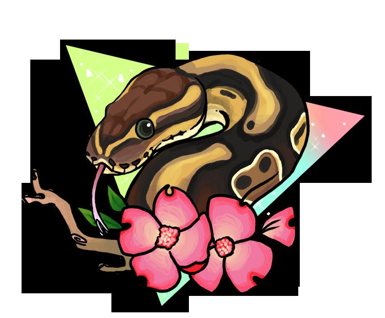 Magical Ball Python By Sloth Bug On Deviantart