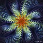Splits-Elliptic flower