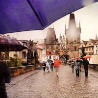 Under my umbrella by BlueColoursOfNature