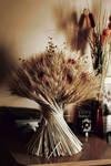 Autumn...the year's last, loveliest smile