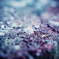 snowflakes by BlueColoursOfNature