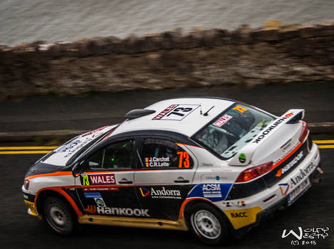 Joan Carchat Wales Rally GB 2