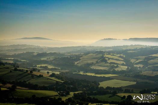 Valley of mist