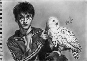 Harry Potter and Hedwig by FridaG