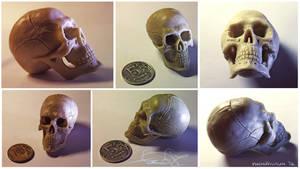 Skull - plasticine by fear-sAs