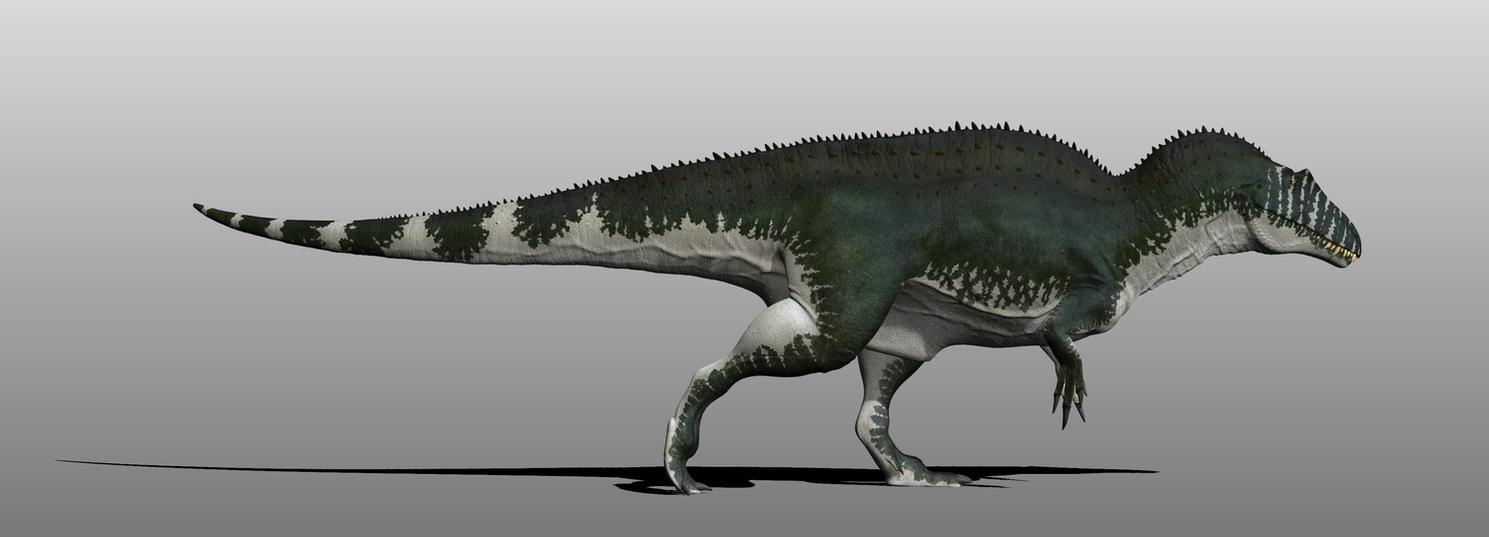 Acrocanthosaurus by Manuelsaurus