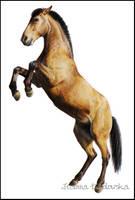 horse drawing by Ladowska