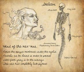 Head and skeleton of a merman by HarrietKaarre