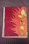 The eyes of a Torchic