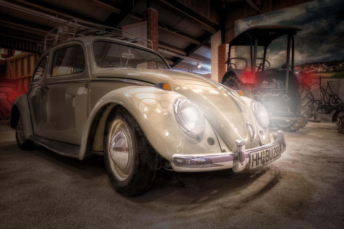 Beetle by IndependentlyConceal
