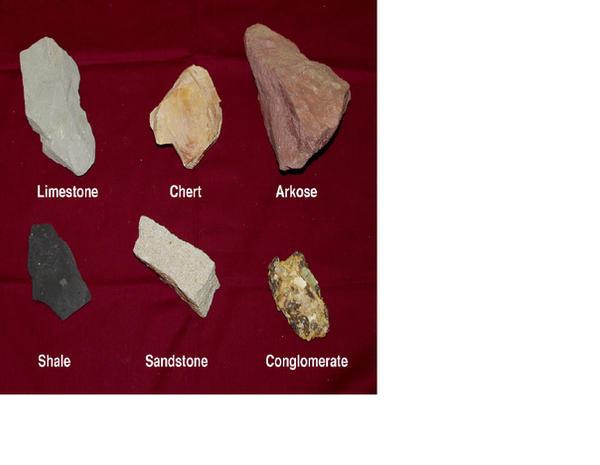 sedimentary rocks essay