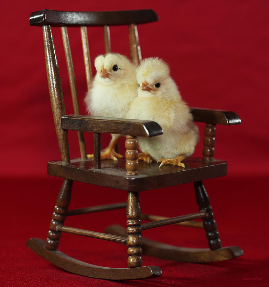 nude chick on rocking chair