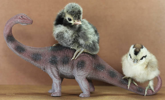 The Dino Ride