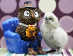 Uncle Owly by Innocentium