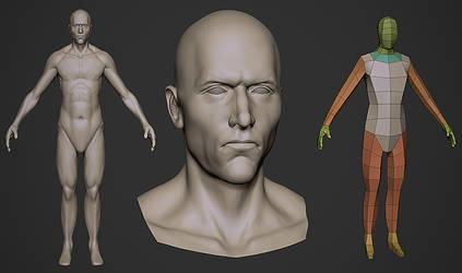 ZBrush anatomy practice