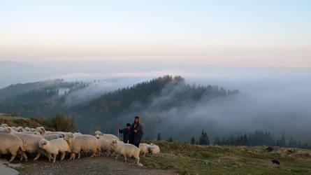 Shepherd by mFlavia