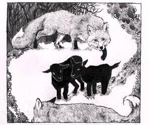 Fox circle by Jerzynka