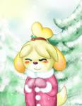 Brrr! Merry Christmas!
