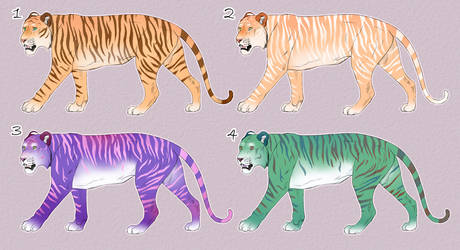 Funky Tiger Adopts 3/4 OPEN