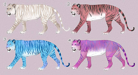 More Funky Tiger Adopts 4/4 OPEN